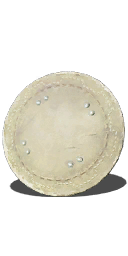 Large Leather Shield