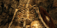 Skeleton (Dark Souls II)