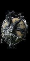 Transgressor's Leather Shield