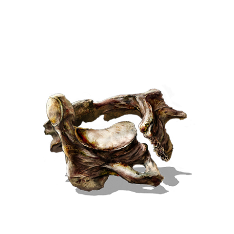 File:Vertebra Shackle.png