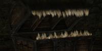 Mimic (Dark Souls II)