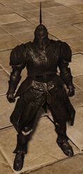 Сет Драконьего стража.jpg
