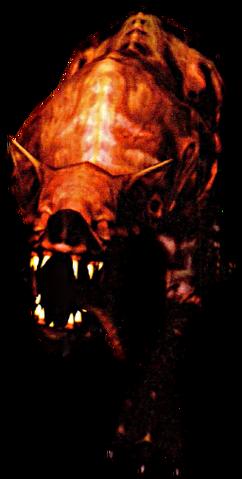 File:Flaming Attack Dog.png