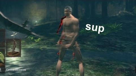 Dark Souls 360 body glitch