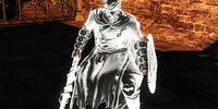 Drifter Swordsman Aidel