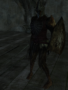 Hollow Soldier (Estoc)