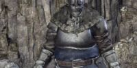 Exile Armor Set