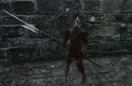 Hollow Soldier (Halberd)