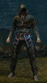 Hollow Thief Set Male.png