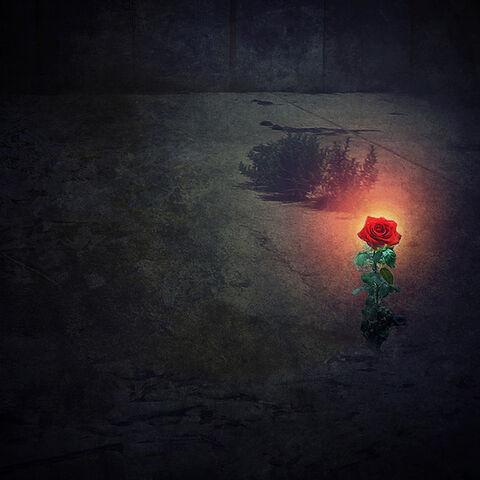 File:The Garden of the Rose.jpg
