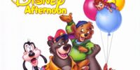 The Disney Afternoon (television block)