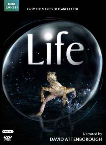File:Life DVD cover.jpg