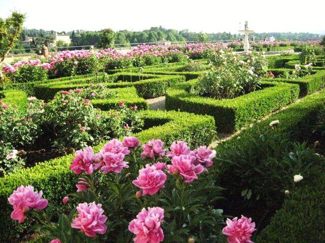 File:Rose-garden-Boboli-gardens-Florence-Italy-1024x768.jpg