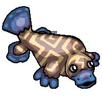 Claypus rare