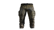 Beige Cargo Pants Model (R)