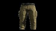 Beige Cargo Pants Model (P-W)