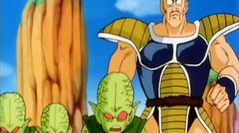 DBZ Abridged The Best of Nappa