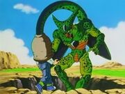 Imperfect cell 2