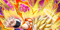 The Light that Crushes Evil Super Gogeta