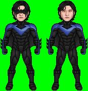 ABEL Nightwing Revised 1101