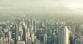 Metropolis-MOS.png