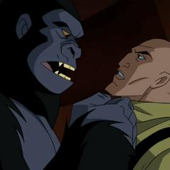 Grodd and Lex Luthor.