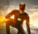 The Flash: Enter Zoom