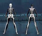 FullSkeletonFemale