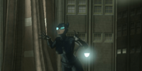 Catch Catwoman!