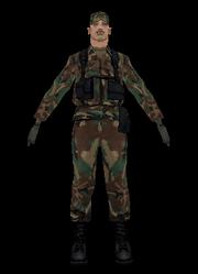 Soldat, SA.PNG