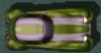 Darkstripedrumbler2.jpg