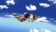 WSR skydiving