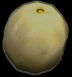 Dead rising Melon