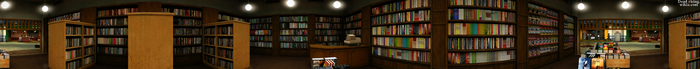 Dead rising Contemporary Reading PANORAMA