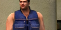 Blue Vest with Tan Shorts
