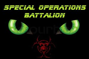 """Special Operations Battalion"""