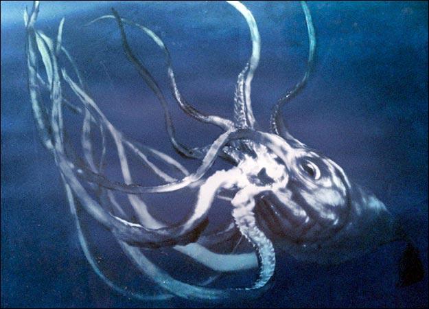 File:Kraken-625x450.jpg