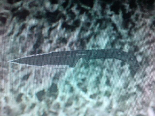 File:Throwing knife floor.jpg