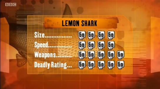 File:S1 DR lemon shark.png