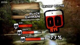 Ptp dr black caiman