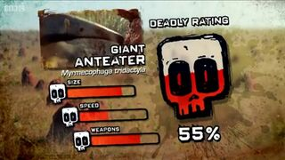 Ptp DR giant anteater