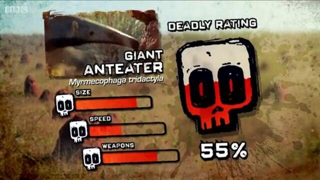 File:Ptp DR giant anteater.jpg