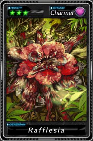 File:-000019--Rafflesia-.png