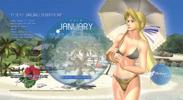 File:DOAP Calendar Jan.jpg