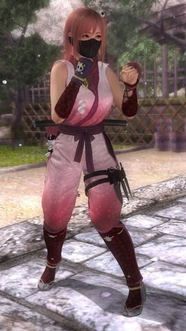 File:DOA5LR costume Ninja Clain VOL1 Honoka.jpg
