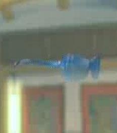 File:DOAXBVGoggleSunglasses(Blue).jpg