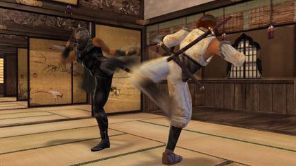 File:Hayabusa vs Hayate.jpg