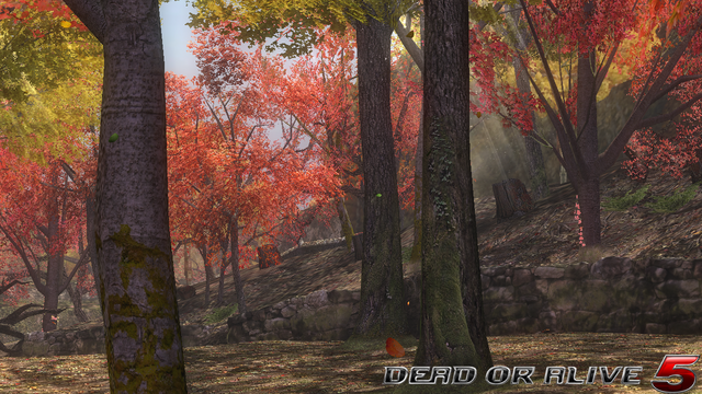 File:DOA5LR - Forest2- screen by AdamCray and AgnessAngel.png