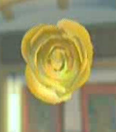 File:DOAXBVYellowRose.jpg