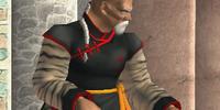 Gen Fu/Dead or Alive 2 costumes